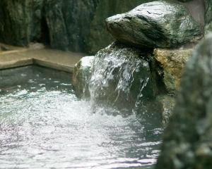 あわら温泉にご宿泊